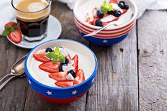 Yogurt bowl with blueberries and strawberries Royalty Free Stock Photos