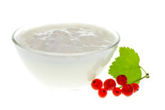 Yogurt bowl with Redcurrant berries Royalty Free Stock Images