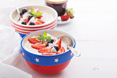 Yogurt bowls with strawberry and blueberry Stock Photography