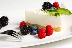 Yogurt cake. With forest fruit Stock Image