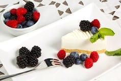 Yogurt cake. With forest fruit Royalty Free Stock Photography