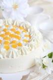 Yogurt cake with oranges Stock Photography