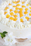 Yogurt cake with oranges Royalty Free Stock Photo
