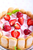 Yogurt cake Stock Images