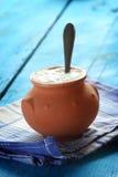 Yogurt casalingo Immagini Stock