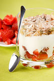 Yogurt with cereal Stock Photography