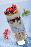 Yogurt with cereal and  berries Royalty Free Stock Photos
