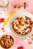 Yogurt with cereal and fruits Royalty Free Stock Photo