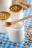 Yogurt with cereal Royalty Free Stock Photos
