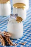 Yogurt with cereal Stock Image