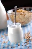 Yogurt with cereal Stock Photos
