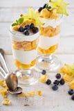 Yogurt cereal parfait with mango royalty free stock images