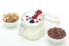 Yogurt with fresh fruit on a white table Stock Images