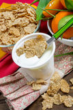 Yogurt with cereals Stock Photography