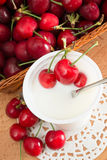 Yogurt with cherries Stock Images