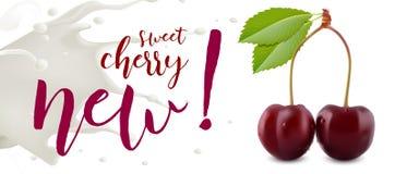 Yogurt Cherry concept. Realistic cherry vector illustration with milk splash. Royalty Free Stock Image