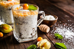 Yogurt with chia, coconut, honey and physalis puree royalty free stock image