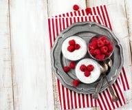 Yogurt with chia seeds and fresh raspberries. Yogurt with chia seeds and fresh raspberries for healthy breakfast Stock Photography