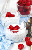 Yogurt with chia seeds and fresh raspberries. Yogurt with chia seeds and fresh raspberries for healthy breakfast Royalty Free Stock Images