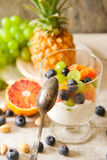 yogurt chia seeds with red oranges, blueberries and pistachios Stock Images
