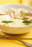 Yogurt chicken and rice soup Royalty Free Stock Photography