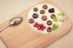 yogurt with chocolate flakes, berries and mint on a wooden tray/yogurt with chocolate flakes, berries and mint on a wooden tray. stock image