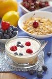 Yogurt com bagas frescas Imagens de Stock Royalty Free