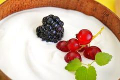 Yogurt com frutas Fotos de Stock