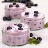 Yogurt com uvas-do-monte foto de stock royalty free