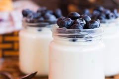 Yogurt con i mirtilli in un vaso di vetro Fotografia Stock