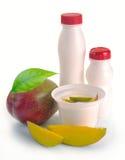 Yogurt con il mango ed i pezzi Fotografia Stock