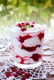 Yogurt con l'inceppamento del melograno Immagine Stock Libera da Diritti
