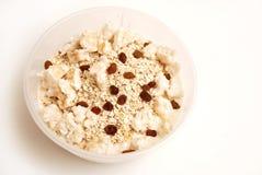 Yogurt con la farina d'avena, l'uva passa e l'aumento soffiato Fotografie Stock