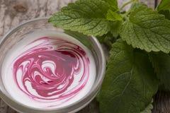 Yogurt con la salsa di mirtillo rosso Immagini Stock Libere da Diritti