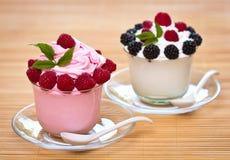 Yogurt congelado Imagen de archivo libre de regalías