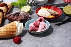 Yogurt congelato vaniglia o gelato molle e cono e frui della cialda Fotografie Stock