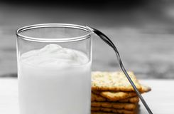 Yogurt and cookies is a healthy breakfast. Yogurt made from milk fermented by added bacteria, often sweetened and flavored royalty free stock image