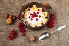 Yogurt,corn flakes,red currant and nuts on rustic background Royalty Free Stock Image