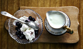 Yogurt and cottage cheese with wineberry Royalty Free Stock Photos
