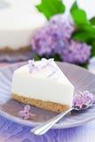 Yogurt cream cake Stock Image