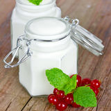 Yogurt with currants Royalty Free Stock Photo