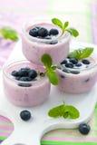 Yogurt de fruta Fotografia de Stock