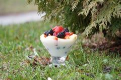Yogurt de fruta fresca Fotografia de Stock Royalty Free