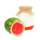 Yogurt del melone Fotografia Stock