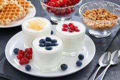 Yogurt dell'assortimento con le bacche e le cialde fresche per la prima colazione Fotografia Stock