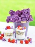 Yogurt della fragola Immagini Stock Libere da Diritti