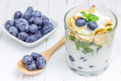 Yogurt dessert with blueberry, kiwi and cereals Royalty Free Stock Photo