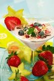 Yogurt dessert with fruits Stock Photography