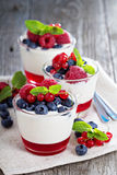 Yogurt dessert with jelly and fresh berries. Yogurt dessert with red currant jelly and fresh berries Royalty Free Stock Photo