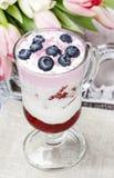 Yogurt dessert with summer fruits Stock Image